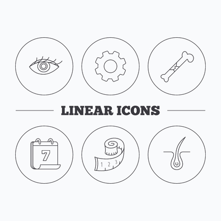 vision loss: Bone fracture, weight loss and trichology icons. Eye linear sign. Flat cogwheel and calendar symbols. Linear icons in circle buttons. Vector Illustration
