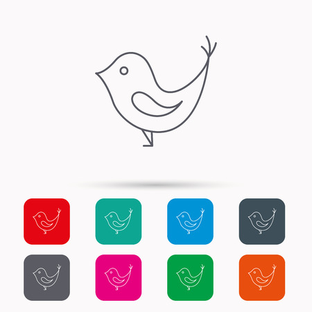 fowl: Bird with beak icon. Cute small fowl symbol. Social media concept sign. Linear icons in squares on white background. Flat web symbols. Vector