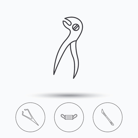 tweezers: Medical mask, scalpel and dental pliers icons. Eyebrow tweezers linear sign. Linear icons in circle buttons. Flat web symbols. Vector Illustration