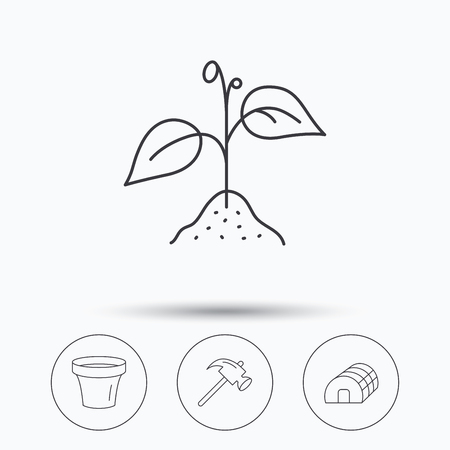 crop circles: Sprout plant, hammer and pot icons. Hothouse linear sign. Linear icons in circle buttons. Flat web symbols. Vector