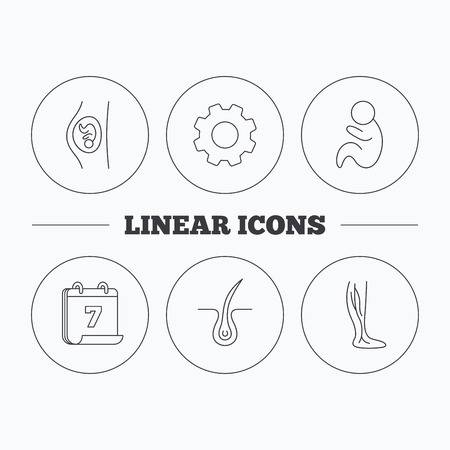 pediatrics: Pregnancy, pediatrics and phlebology icons. Trichology, vein varicose linear signs. Flat cogwheel and calendar symbols. Linear icons in circle buttons. Vector Illustration