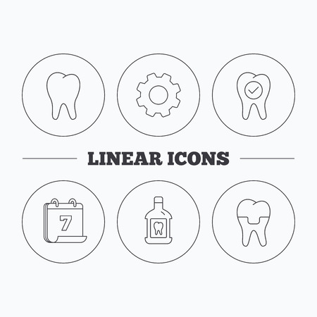 Tooth, dental crown and mouthwash icons. Check teeth linear sign. Flat cogwheel and calendar symbols. Linear icons in circle buttons. Vector
