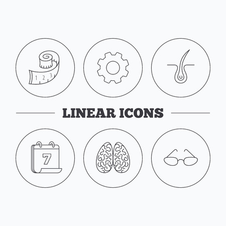 vision loss: Glasses, neurology and trichology icons. Weight loss linear sign. Flat cogwheel and calendar symbols. Linear icons in circle buttons. Vector Illustration