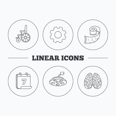 neurosurgery: Wheelchair, neurology and weight loss icons. Surgical lamp linear sign. Flat cogwheel and calendar symbols. Linear icons in circle buttons. Vector