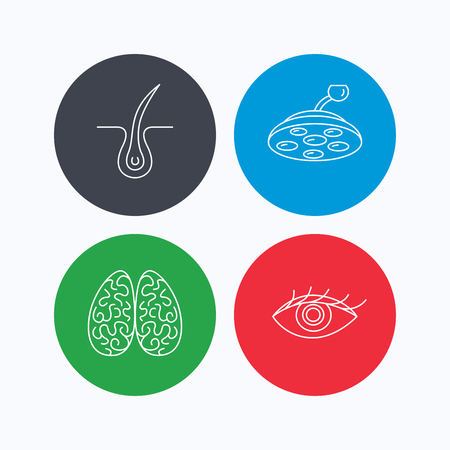 neurology: Eye, neurology brain and surgical lamp icons. Trichology linear sign. Linear icons on colored buttons. Flat web symbols. Vector