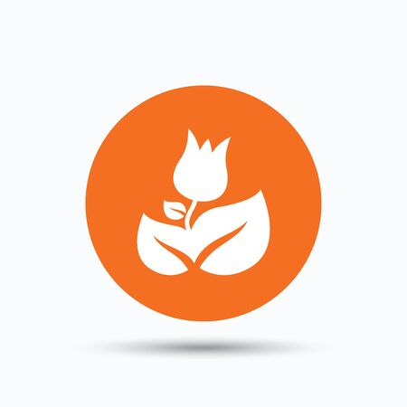 florist: Rose flower icon. Florist plant with leaf symbol. Orange circle button with flat web icon. Vector