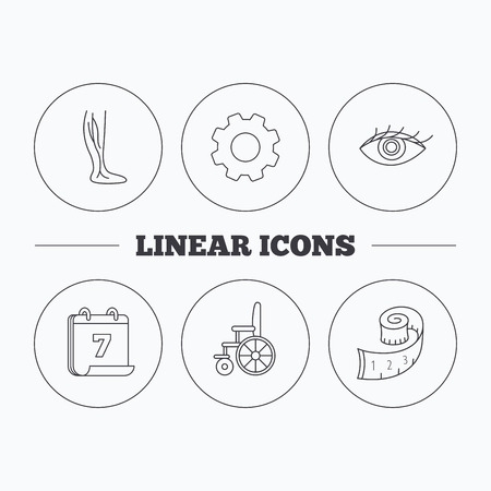 vision loss: Vein varicose, wheelchair and weight loss icons. Eye linear sign. Flat cogwheel and calendar symbols. Linear icons in circle buttons. Vector