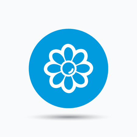 florist: Flower icon. Florist plant with petals symbol. Blue circle button with flat web icon. Vector