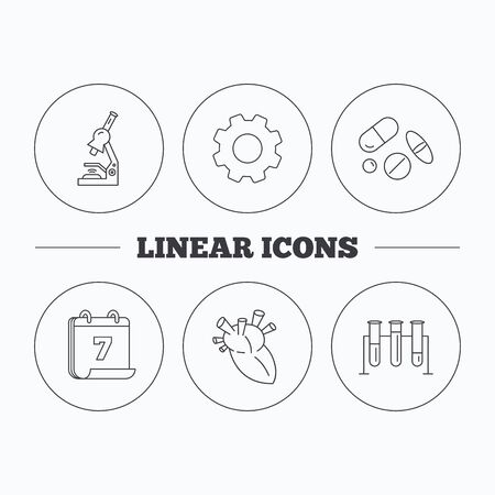 bacteria in heart: Microscope, medical pills and heart icons. Lab bulbs linear sign. Flat cogwheel and calendar symbols. Linear icons in circle buttons. Vector