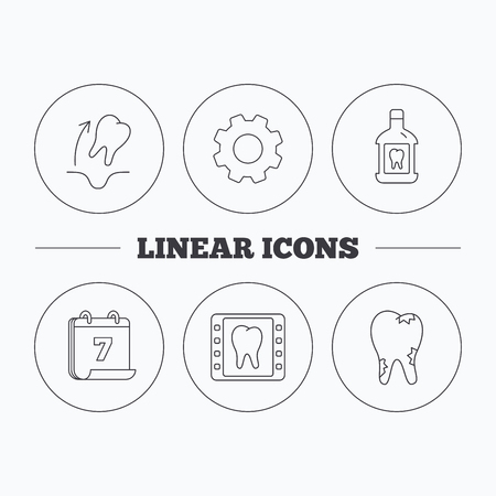 tooth extraction: Tooth extraction, caries and mouthwash icons. Dental x-ray linear sign. Flat cogwheel and calendar symbols. Linear icons in circle buttons. Vector Illustration
