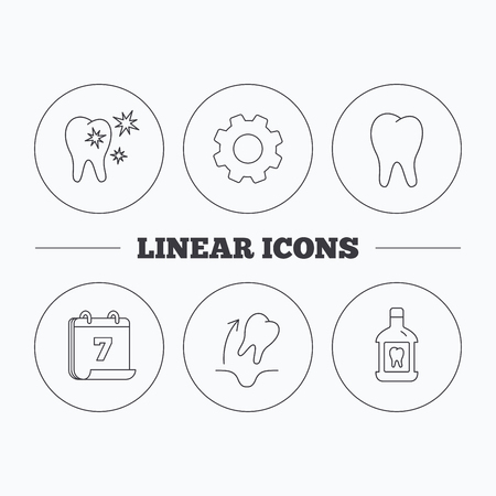 Tooth, mouthwash and healthy teeth icons. Tooth extraction linear sign. Flat cogwheel and calendar symbols. Linear icons in circle buttons. Vector