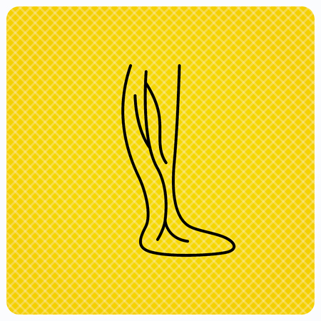 phlebotomy: Phlebology icon. Leg veins sign. Varicose or thrombosis symbol. Linear icon on orange background. Vector