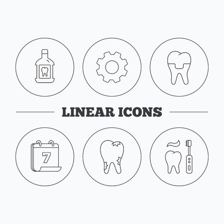 paradontosis: Caries, dental crown and mouthwash icons. Brushing teeth linear sign. Flat cogwheel and calendar symbols. Linear icons in circle buttons. Vector