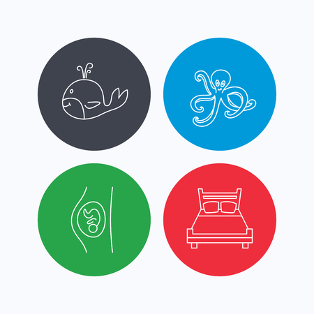 double bed: Whale, octopus and double bed  icons. Pregnancy linear sign. Linear icons on colored buttons. Flat web symbols. Vector Illustration