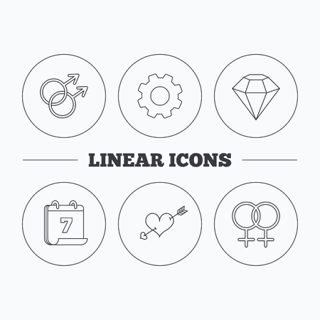 gay love: Love heart, diamond and lesbian love icons. Gay love linear sign. Flat cogwheel and calendar symbols. Linear icons in circle buttons. Vector