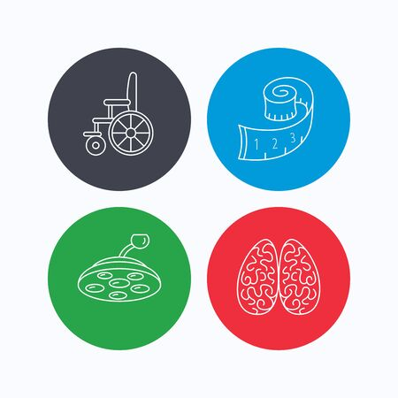 neurosurgery: Wheelchair, neurology and weight loss icons. Surgical lamp linear sign. Linear icons on colored buttons. Flat web symbols. Vector