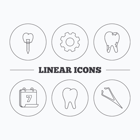 tweezers: Dental implant, caries and tooth icons. Tweezers linear sign. Flat cogwheel and calendar symbols. Linear icons in circle buttons. Vector