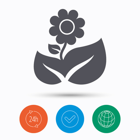 florist: Flower icon. Florist plant with leaf symbol. Check tick, 24 hours service and internet globe. Linear icons on white background. Vector Illustration