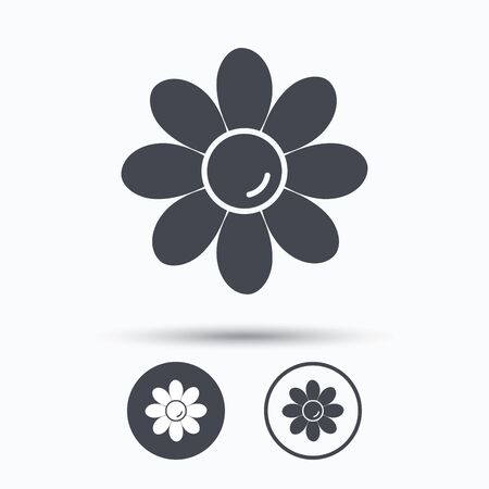 florist: Flower icon. Florist plant with petals symbol. Circle buttons with flat web icon on white background. Vector Illustration