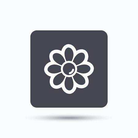 florist: Flower icon. Florist plant with petals symbol. Gray square button with flat web icon. Vector