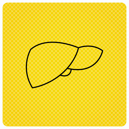 liver failure: Liver icon. Transplantation organ sign. Medical hepathology symbol. Linear icon on orange background. Vector