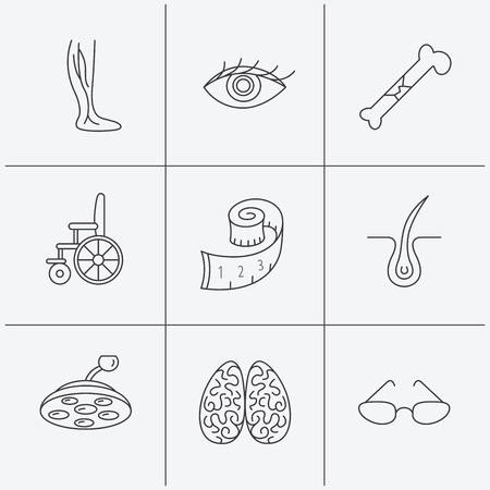 neurosurgery: Vein varicose, neurology and trichology icons. Surgical lamp, glasses and eye linear signs. Bone fracture, wheelchair and weight loss icons. Linear icons on white background. Vector