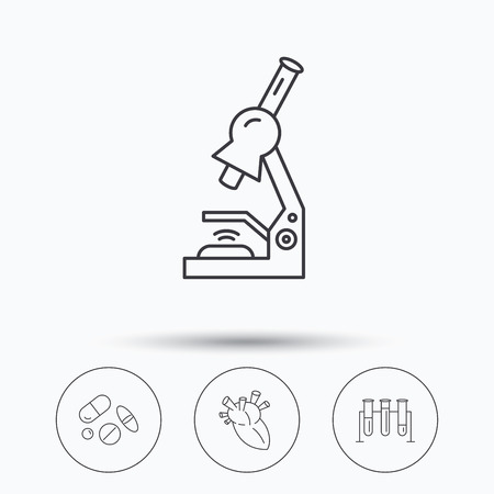 pathology pharmacy: Microscope, medical pills and heart icons. Lab bulbs linear sign. Linear icons in circle buttons. Flat web symbols. Vector