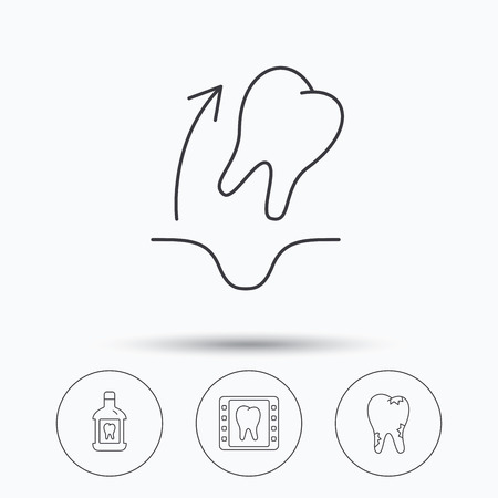 tooth extraction: Tooth extraction, caries and mouthwash icons. Dental x-ray linear sign. Linear icons in circle buttons. Flat web symbols. Vector
