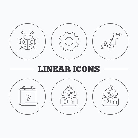 Infant child, ladybug and 0+ months child icons. Unattended child linear sign. Flat cogwheel and calendar symbols. Linear icons in circle buttons. Vector Ilustração
