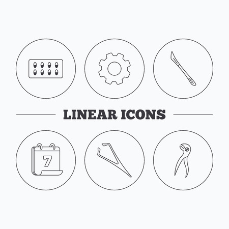 tweezers: Scalpel, capsules and dental pliers icons. Eyebrow tweezers linear sign. Flat cogwheel and calendar symbols. Linear icons in circle buttons. Vector Illustration