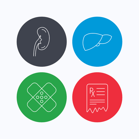 analyses: Liver, medical plaster and prescription icons. Kidney linear sign. Linear icons on colored buttons. Flat web symbols. Vector Illustration