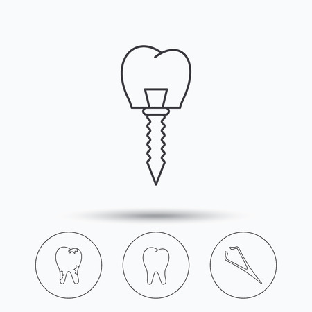 tweezers: Dental implant, caries and tooth icons. Tweezers linear sign. Linear icons in circle buttons. Flat web symbols. Vector