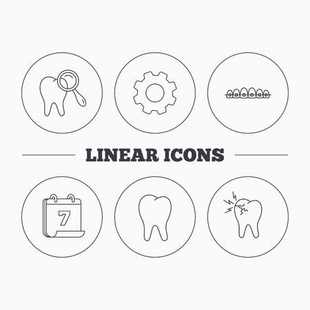toothache: Tooth, dental braces and toothache icons. Dental diagnostics linear sign. Flat cogwheel and calendar symbols. Linear icons in circle buttons. Vector Illustration