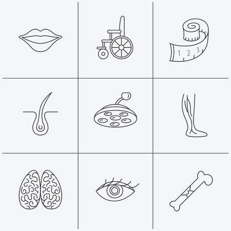 neurology: Eye, neurology brain and vein varicose icons. Wheelchair, bone fracture and trichology linear signs. Weight loss, lips and surgical lamp icons. Linear icons on white background. Vector