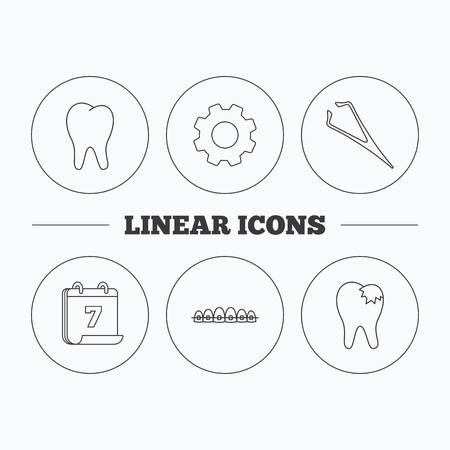tweezers: Dental braces, fillings and tooth icons. Tweezers linear sign. Flat cogwheel and calendar symbols. Linear icons in circle buttons. Vector