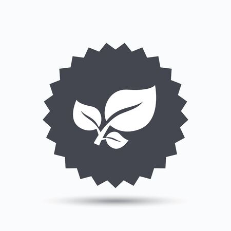 star product: Leaf icon. Fresh organic product symbol. Gray star button with flat web icon. Vector Illustration