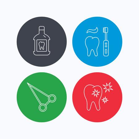enjuague bucal: Enjuague bucal, los dientes sanos y peos fórceps iconos. El cepillado de los dientes señal lineal. iconos lineales en los botones de colores. símbolos web planas. Vector