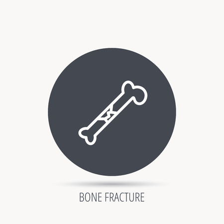 osteo: Bone fracture icon. Traumatology sign. Human bone break. Round web button with flat icon. Vector Illustration