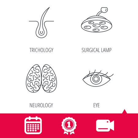 neurology: Achievement and video cam signs. Eye, neurology brain and surgical lamp icons. Trichology linear sign. Calendar icon. Vector
