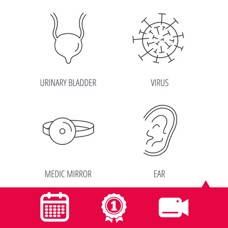 urinary bladder: Achievement and video cam signs. Virus, urinary bladder and ear icons. Medical mirror linear signs. Calendar icon. Vector Illustration