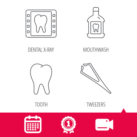 tweezers: Achievement and video cam signs. Mouthwash, tooth and dental x-ray icons. Tweezers linear sign. Calendar icon. Vector
