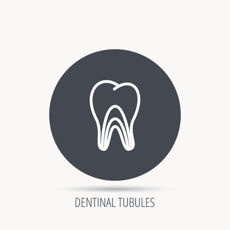 pulpitis: Dentinal tubules icon. Tooth medicine sign. Round web button with flat icon. Vector