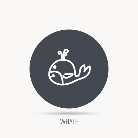 baleen whale: Whale icon. Largest mammal animal sign. Baleen whale with fountain symbol. Round web button with flat icon. Vector Illustration