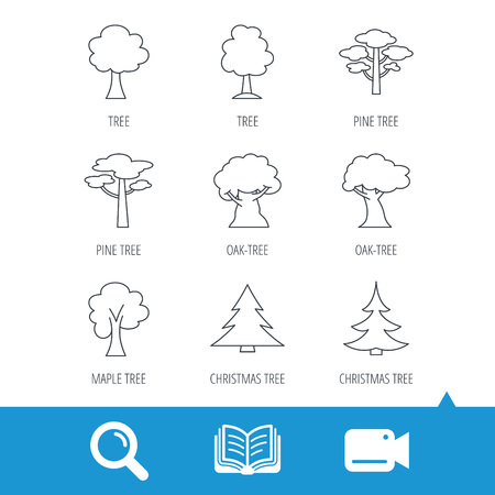 wilds: Pine tree, maple and oak icons. Christmas trees linear signs. Forest trees flat line icons. Video cam, book and magnifier search icons. Vector