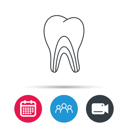 pulpitis: Dentinal tubules icon. Tooth medicine sign. Group of people, video cam and calendar icons. Vector Illustration