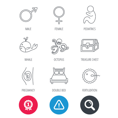 paediatrics: Achievement and search magnifier signs. Fertilization, pregnancy and pediatrics icons. Baby child, whale and octopus linear signs. Treasure chest, double bed icons. Hazard attention icon. Vector Illustration