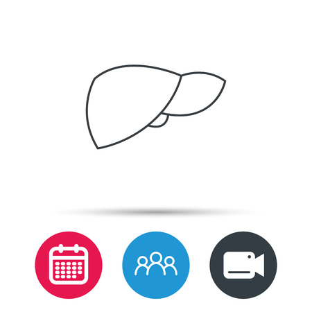 Liver icon. Transplantation organ sign. Medical hepathology symbol. Group of people, video cam and calendar icons. Vector