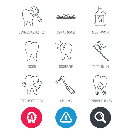 Achievement and search magnifier signs. Tooth, dental braces and mouthwash icons. Diagnostics, toothbrush and toothache linear signs. Dentinal tubules, protection flat line icons. Vector