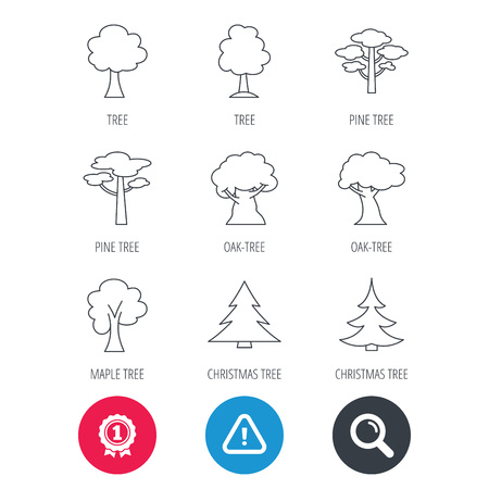 Achievement and search magnifier signs. Pine tree, maple and oak icons. Christmas trees linear signs. Forest trees flat line icons. Hazard attention icon. Vector