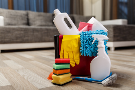 desinfectante: Cleaning service. Bucket with sponges, chemicals bottles and plunger. Rubber gloves and paper towel. Household equipment.